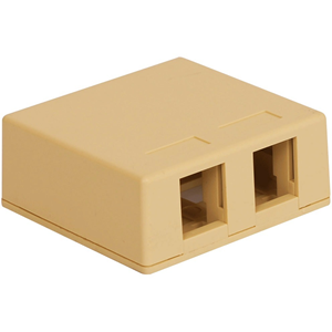 2-PORT SURF MNT BOX IVORY